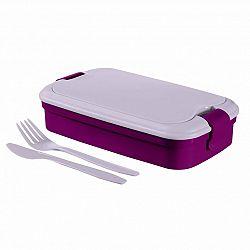 CURVER box Lunch & GO, fialová