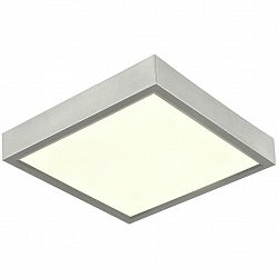 Led Stropná Lampa Fridolin1 12/12cm, 5 Watt